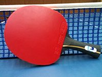 PingSkills Touch Table Tennis Bat With Mark V